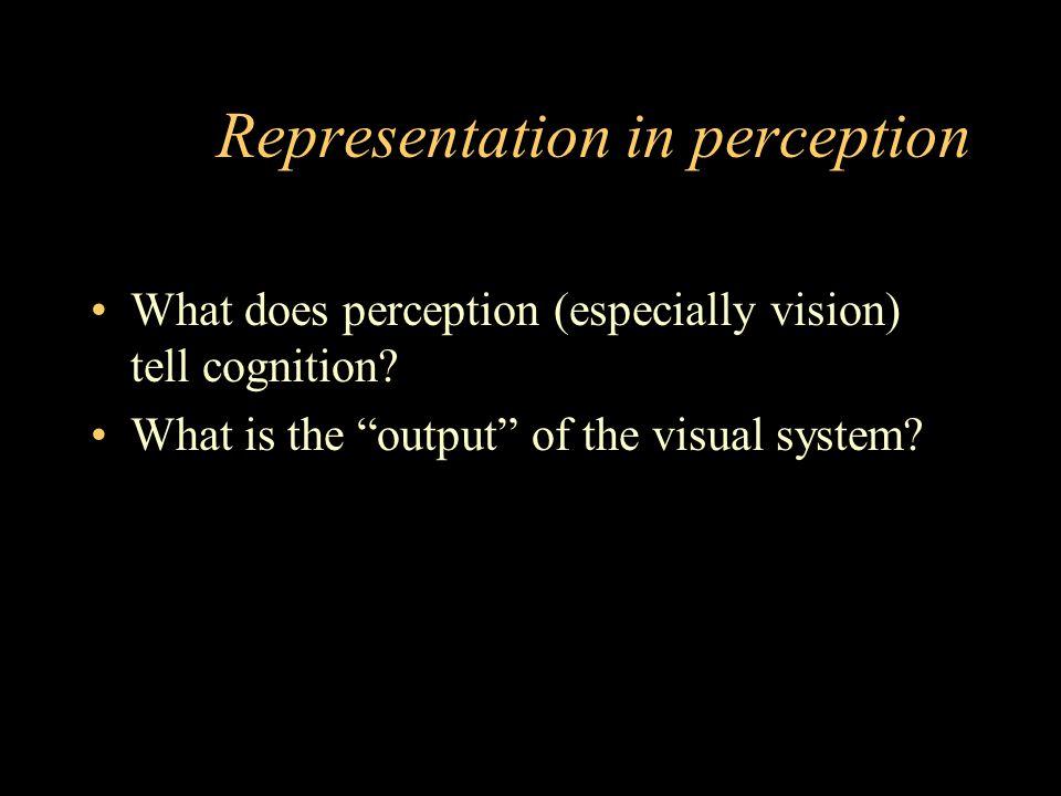 Representation in perception