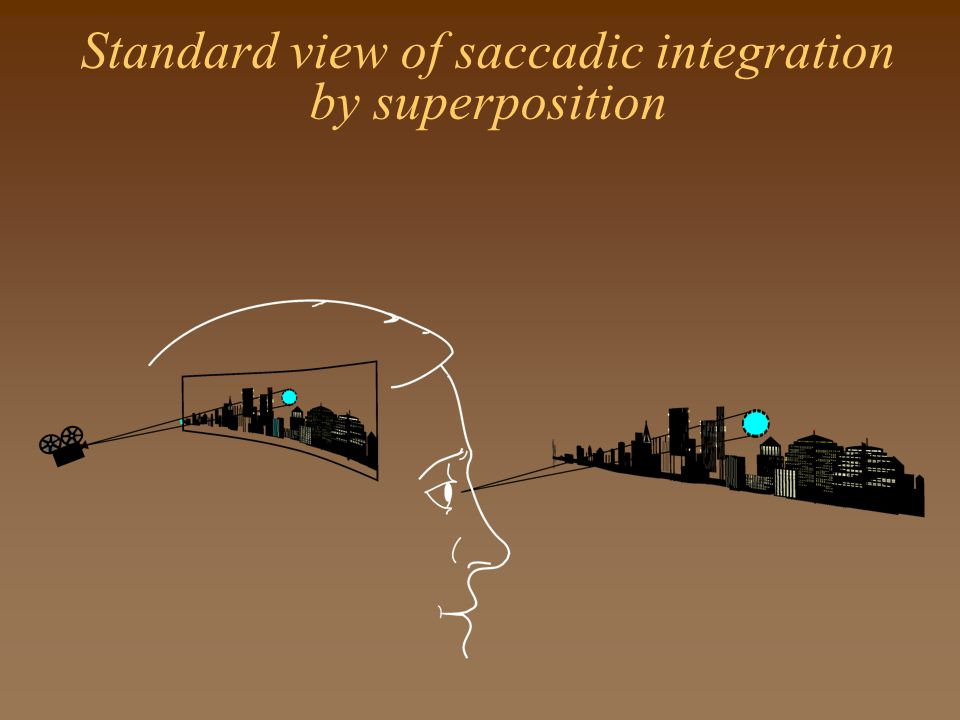 Standard view of saccadic integration by superposition