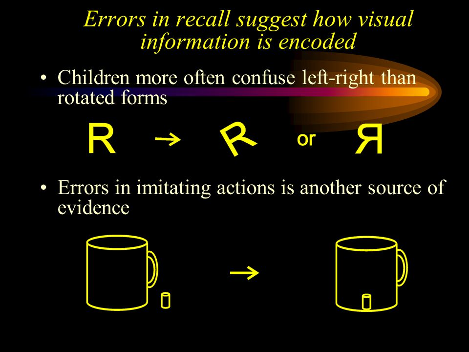 Errors in recall suggest how visual information is encoded