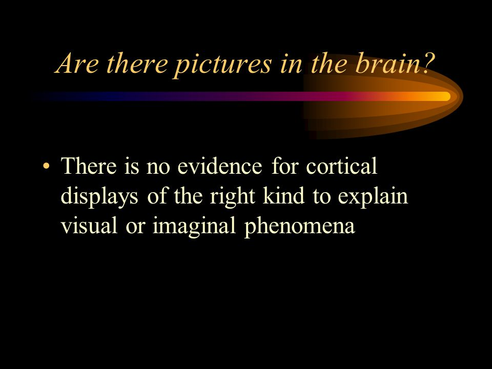 Are there pictures in the brain