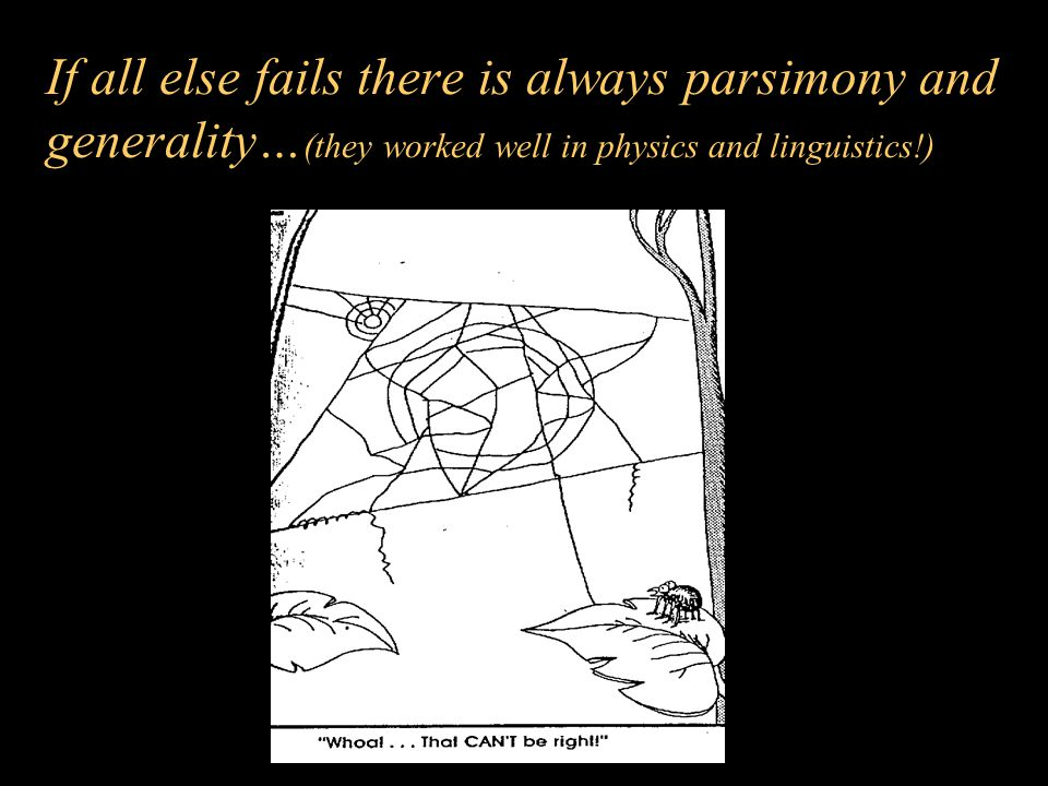 If all else fails there is always parsimony and generality…(they worked well in physics and linguistics!)