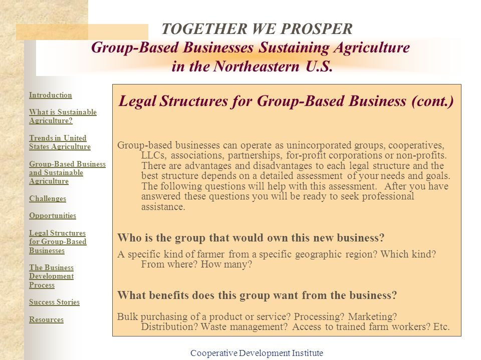 Legal Structures for Group-Based Business (cont.)