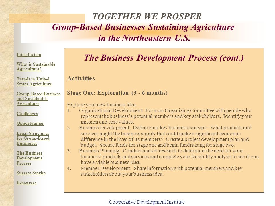 The Business Development Process (cont.)