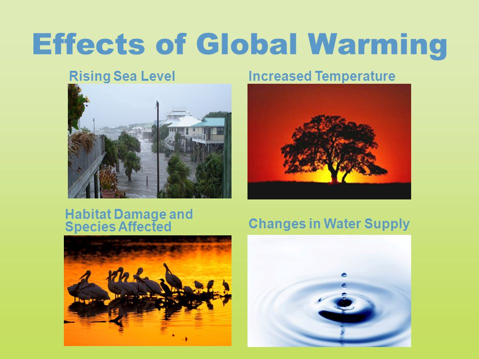rising climate due to global warming will consume earth from the inside Just about all scientists agree that global climate change is likely caused by humans, and the impact on the environment can come in a variety of ways since the change occurs slowly, it's hard to.
