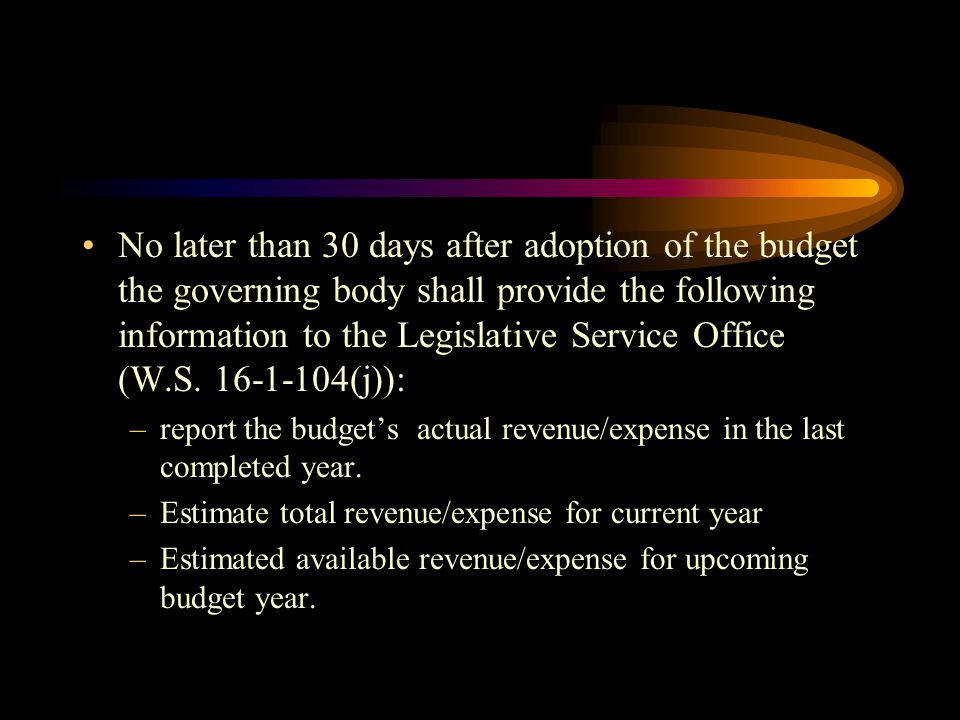 No later than 30 days after adoption of the budget the governing body shall provide the following information to the Legislative Service Office (W.S. 16-1-104(j)):