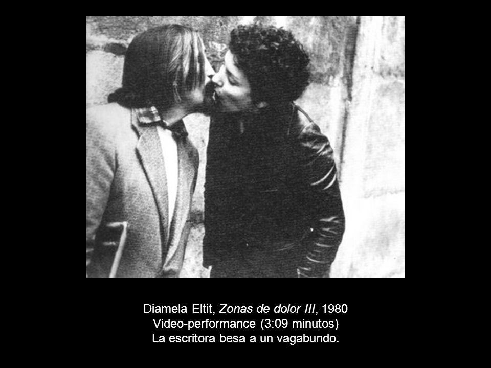 Diamela Eltit, Zonas de dolor III, 1980
