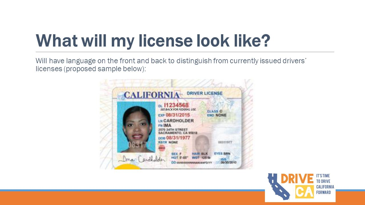 What will my license look like