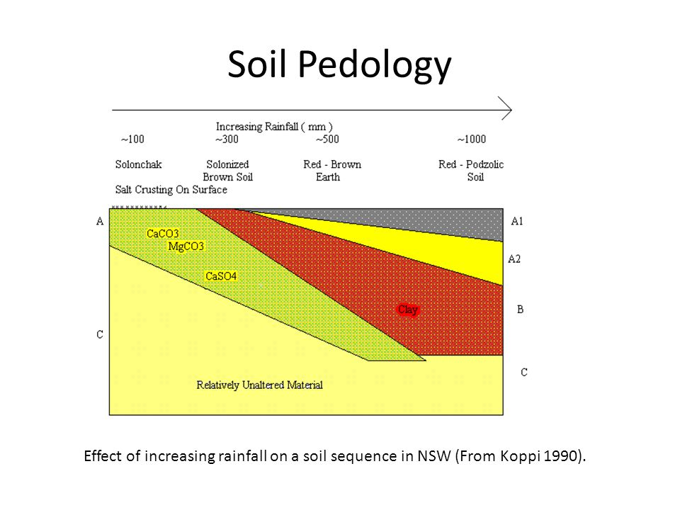 Soil Pedology 1. What is the accumlative effect of rainfall and irrigation in Mega litres equilavents and the effect upon crops / soil formation.