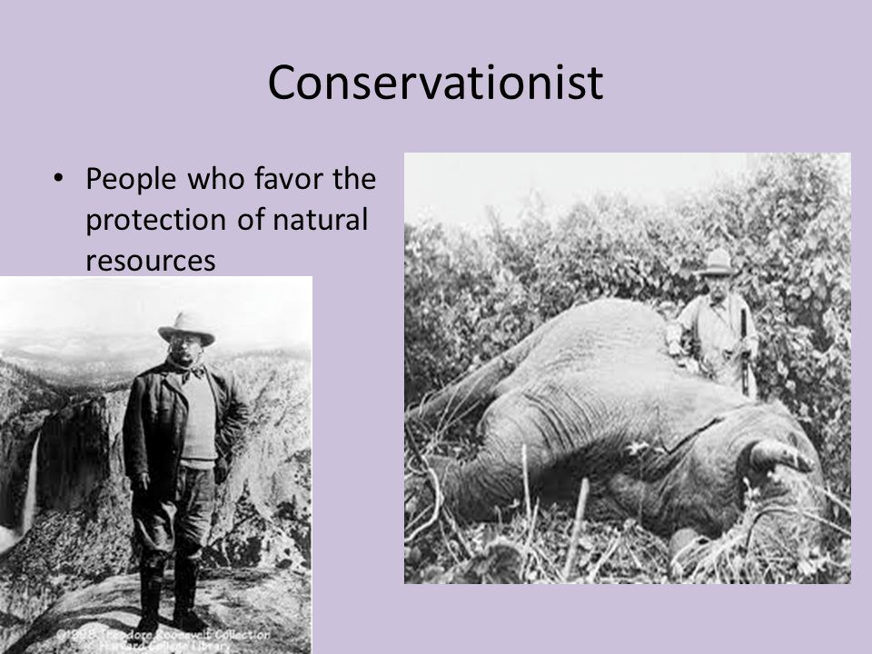 Conservationist People who favor the protection of natural resources