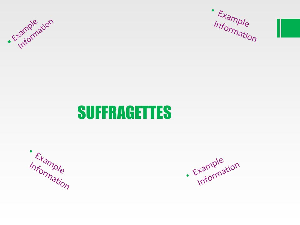 SUFFRAGETTES Example Information Example Information