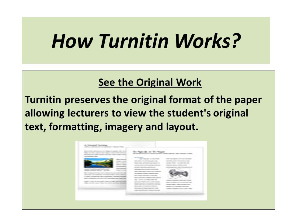 How Turnitin Works See the Original Work