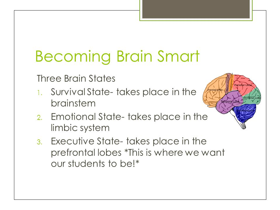 Becoming Brain Smart Three Brain States