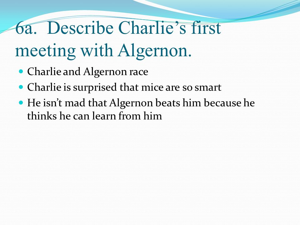 6a. Describe Charlie's first meeting with Algernon.