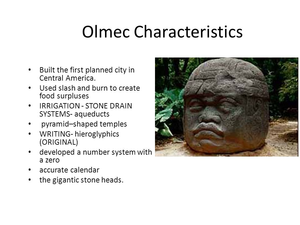 Olmec Characteristics