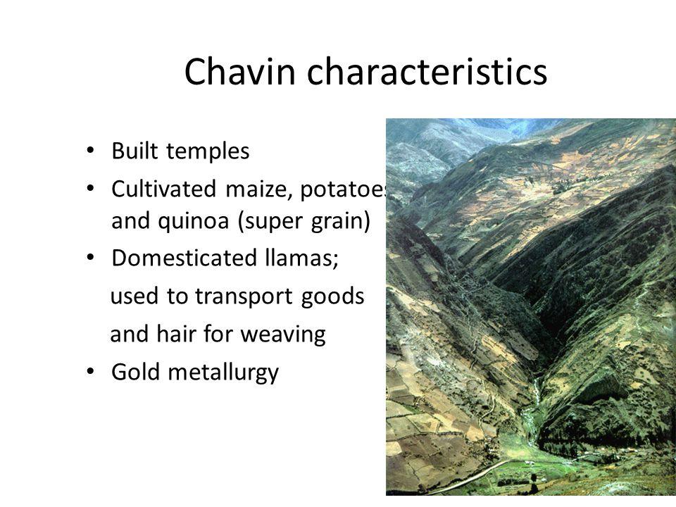 Chavin characteristics