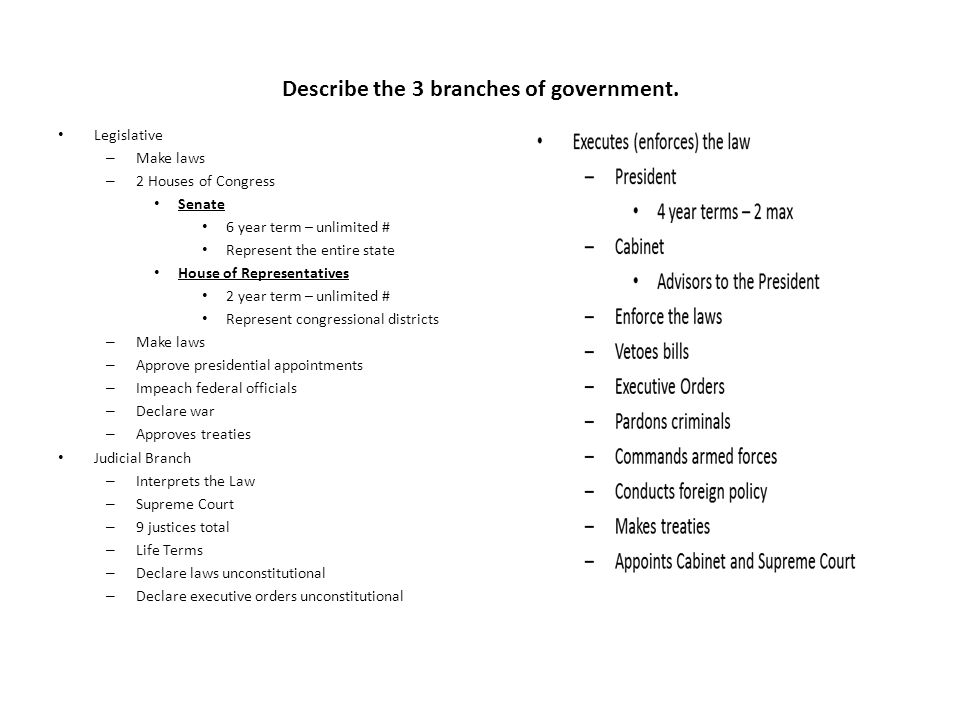 Describe the 3 branches of government.