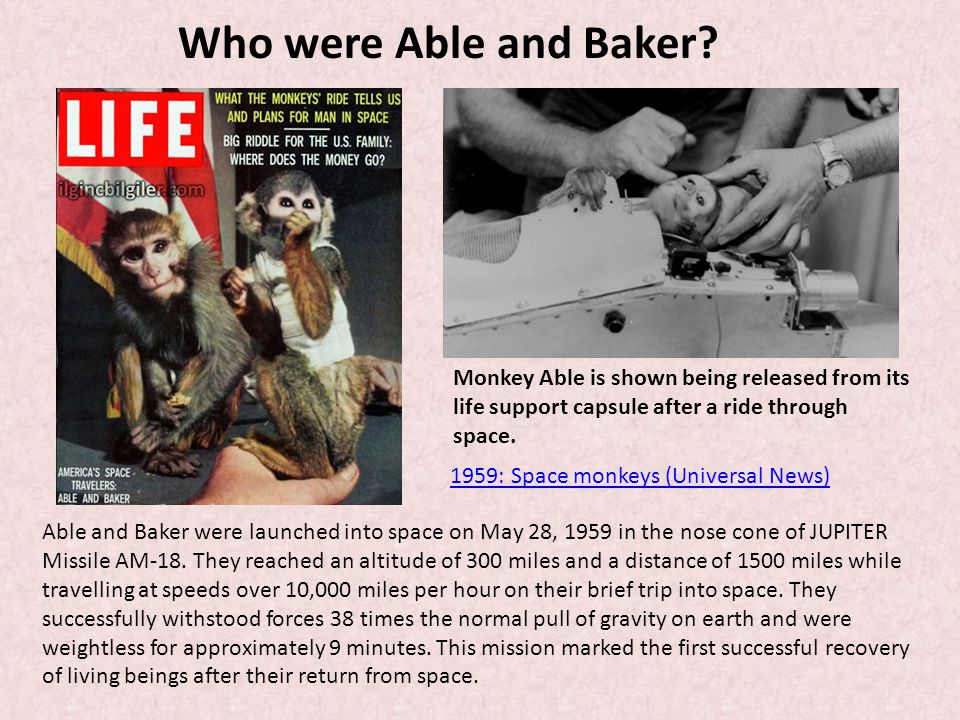 Who were Able and Baker Monkey Able is shown being released from its life support capsule after a ride through space.