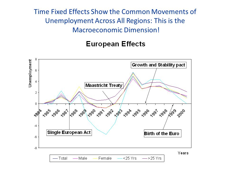 Time Fixed Effects Show the Common Movements of