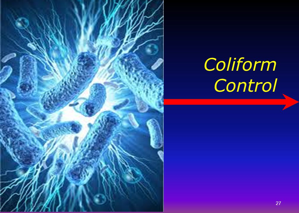 Coliform Control Let's talk about coliform monitoring in the distribution system.