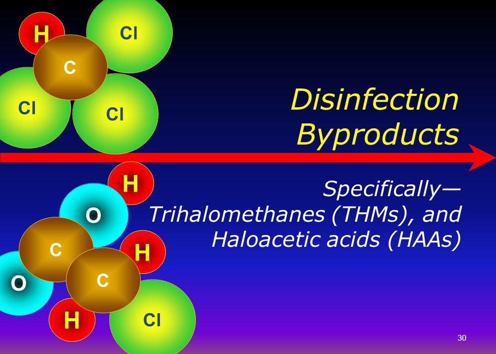 Disinfection Byproducts