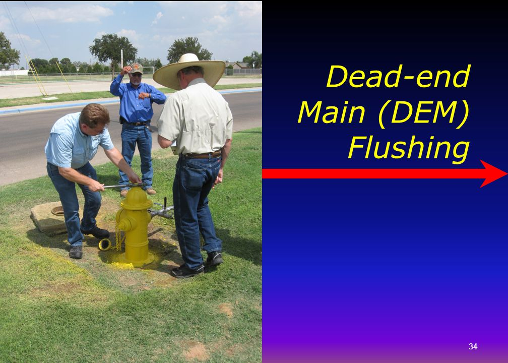 Dead-end Main (DEM) Flushing