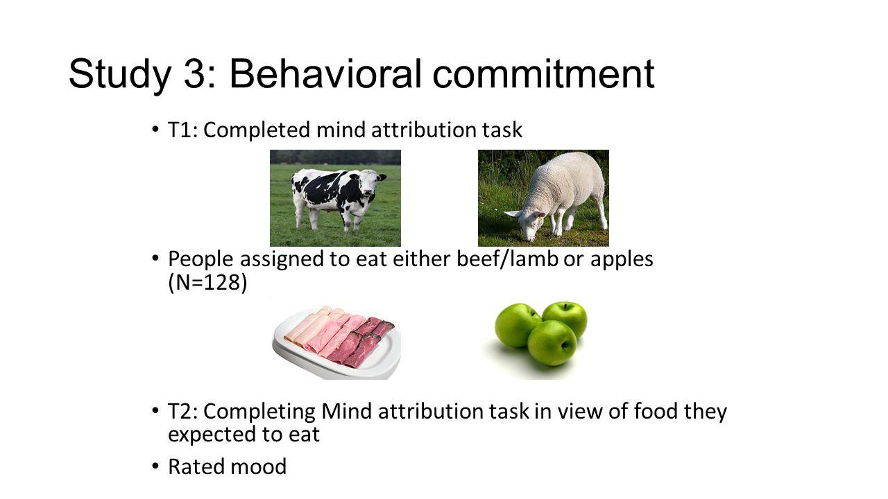 Study 3: Behavioral commitment