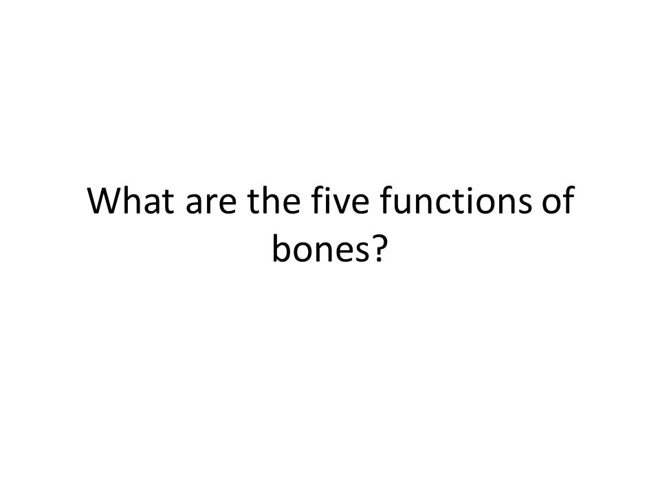 What are the five functions of bones