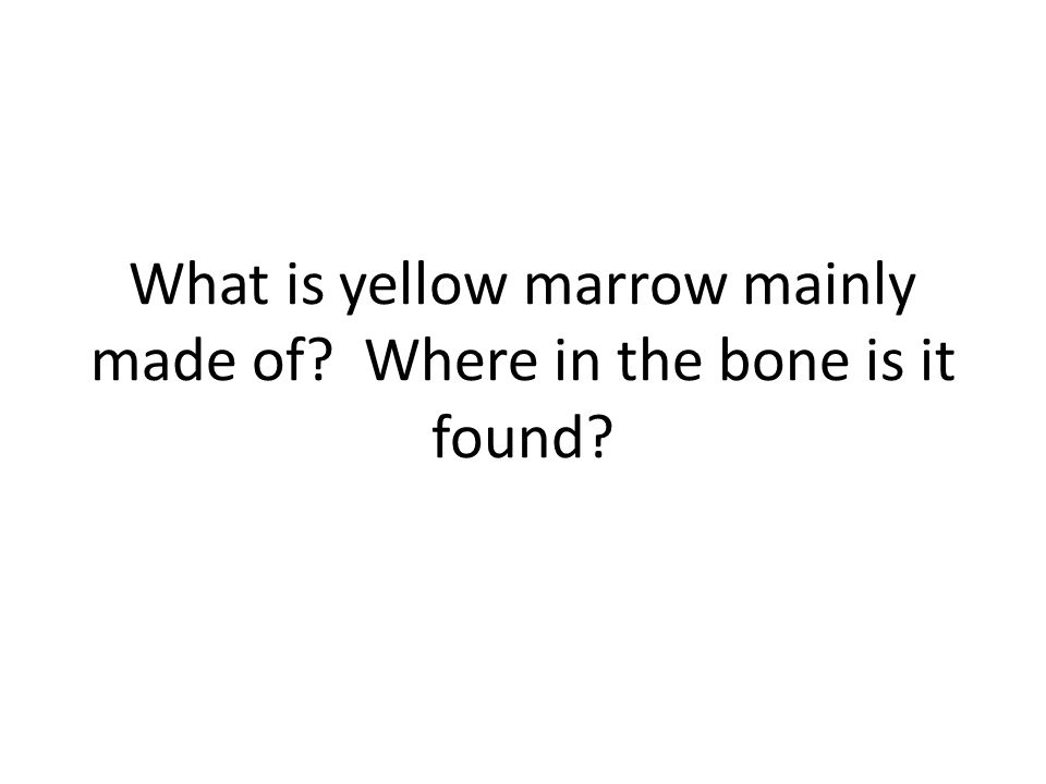 What is yellow marrow mainly made of Where in the bone is it found