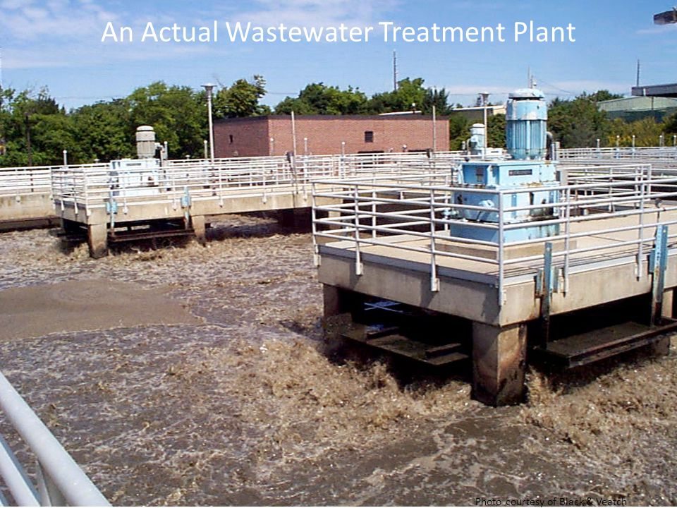 An Actual Wastewater Treatment Plant