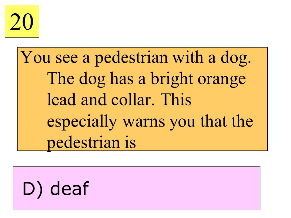 20 You see a pedestrian with a dog. The dog has a bright orange lead and collar. This especially warns you that the pedestrian is.