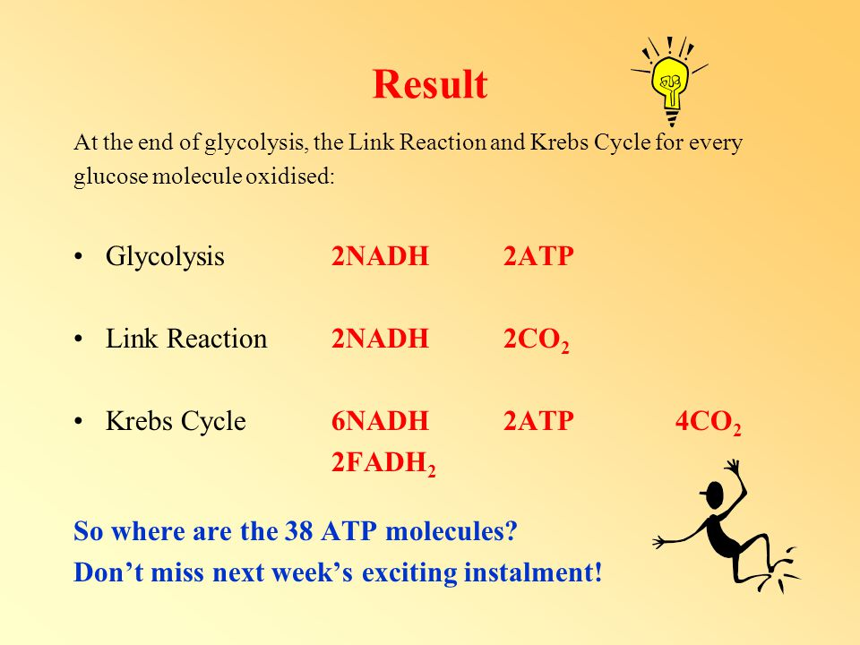 Result Glycolysis 2NADH 2ATP Link Reaction 2NADH 2CO2