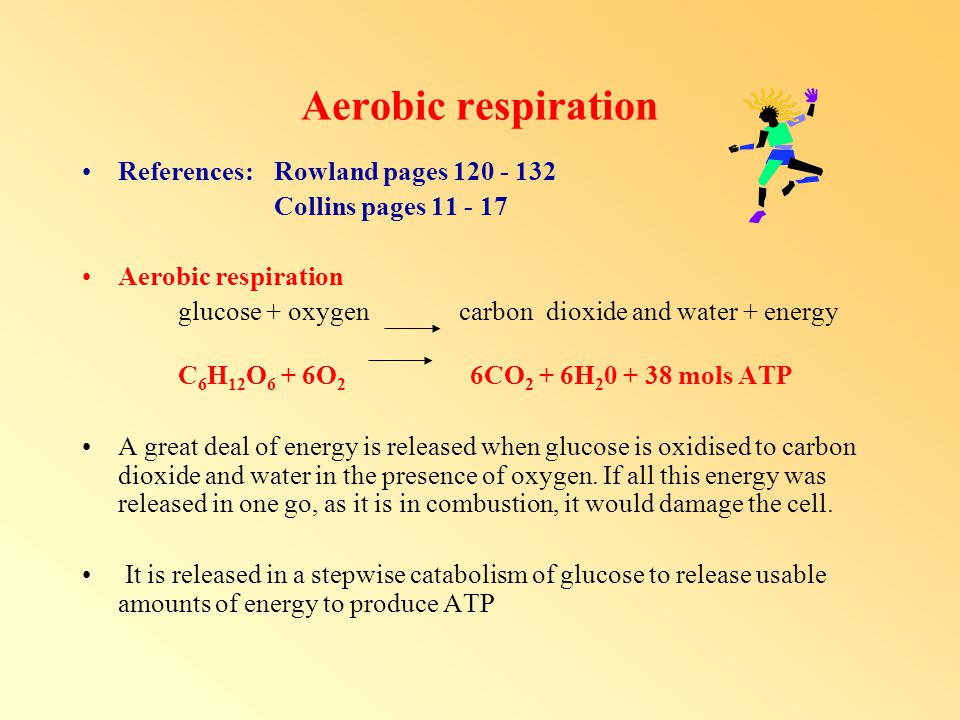 Aerobic respiration References: Rowland pages 120 - 132