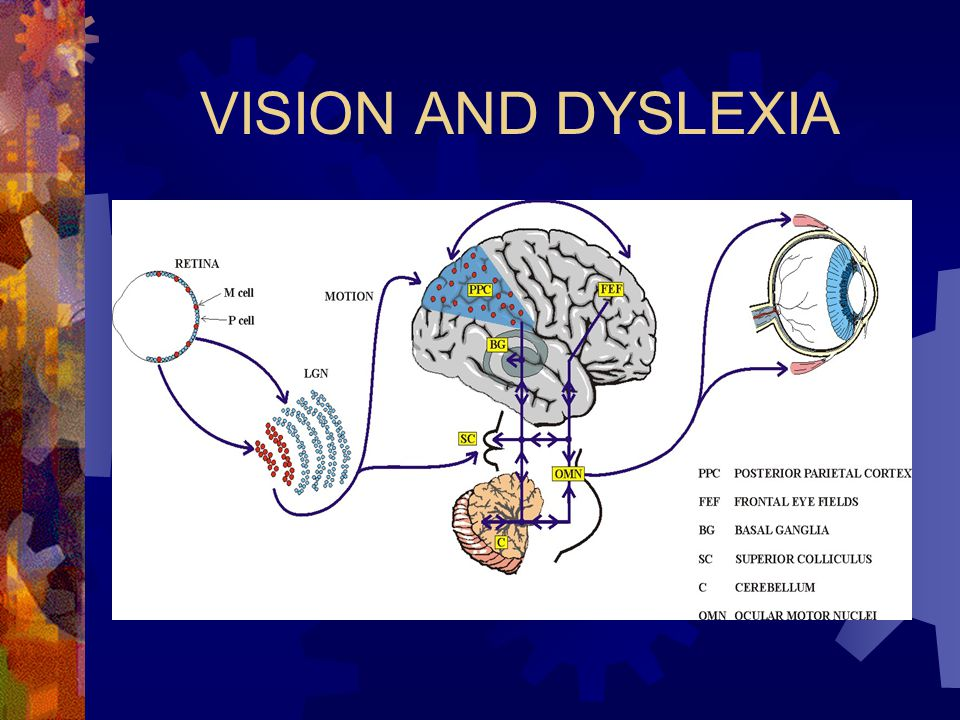VISION AND DYSLEXIA
