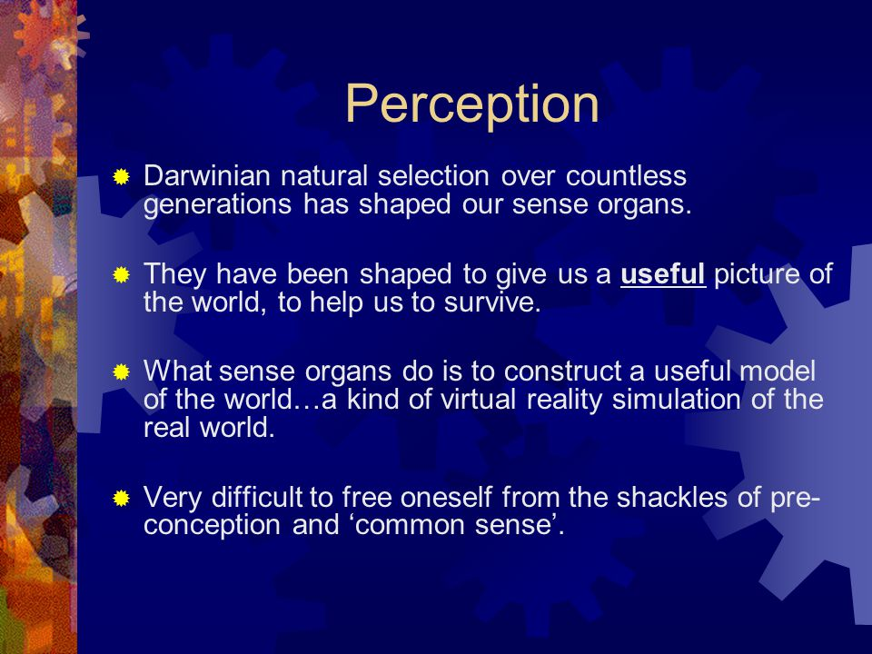 Perception Darwinian natural selection over countless generations has shaped our sense organs.