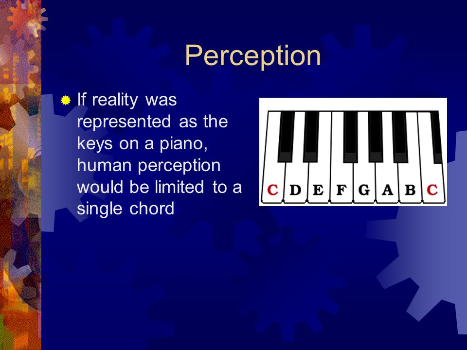 Perception If reality was represented as the keys on a piano, human perception would be limited to a single chord.