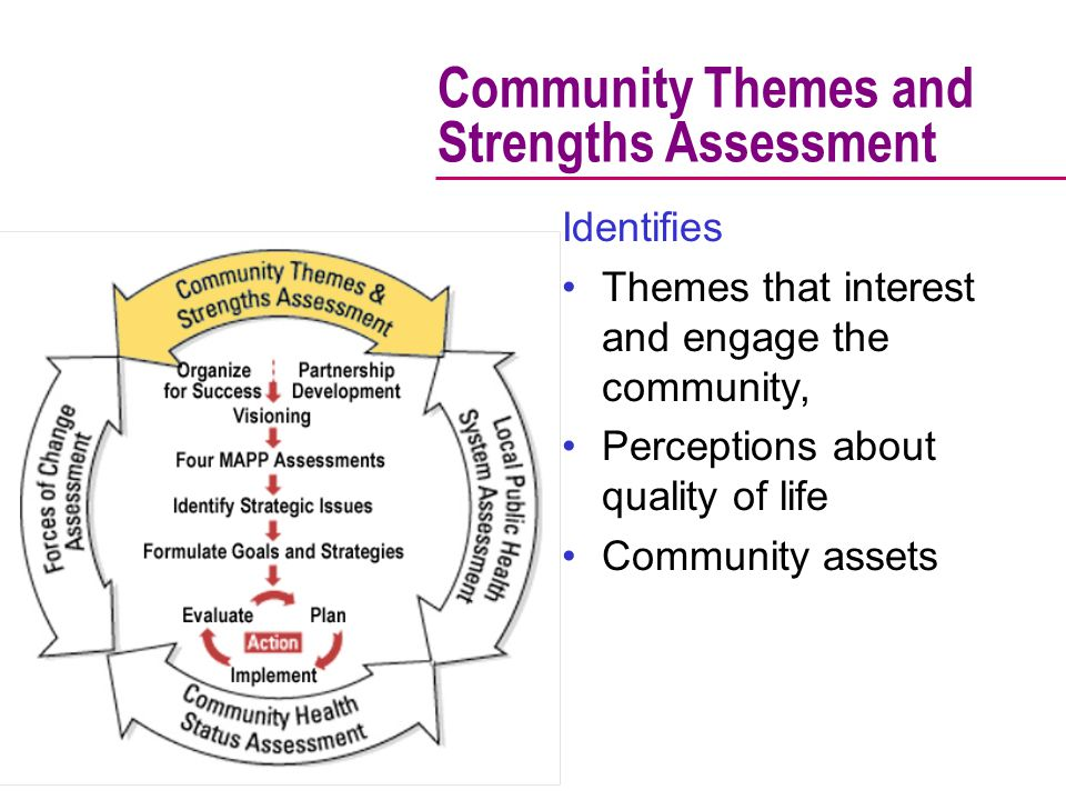 Community Themes and Strengths Assessment