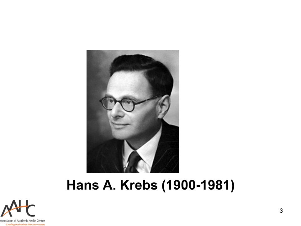Hans A. Krebs (1900-1981)
