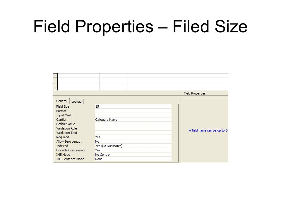 Field Properties – Filed Size