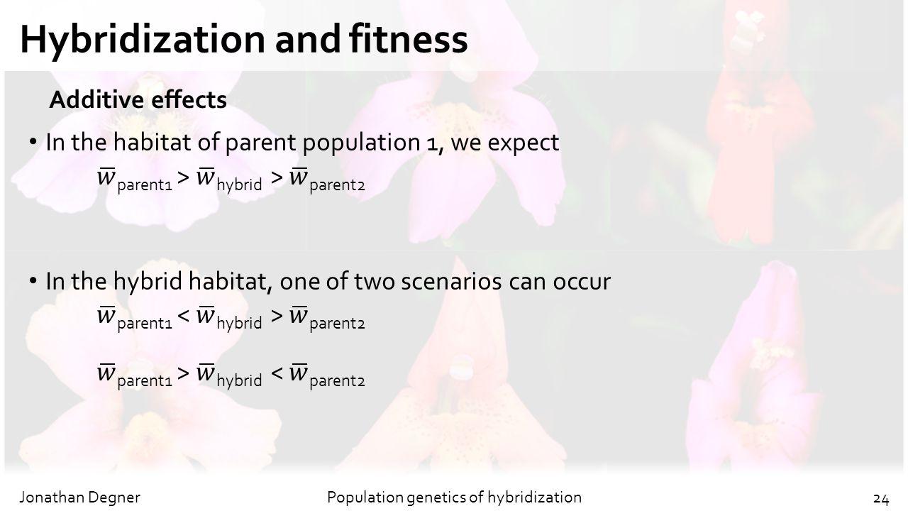 Hybridization and fitness