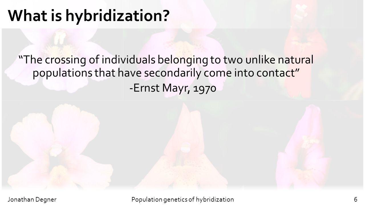 Population genetics of hybridization