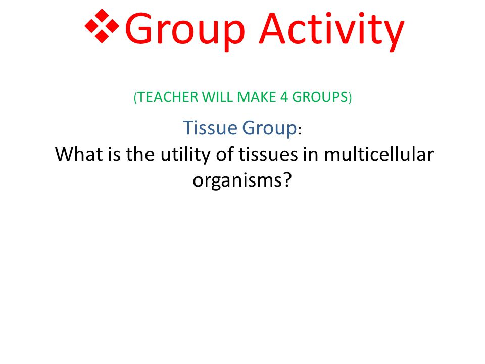 Group Activity (TEACHER WILL MAKE 4 GROUPS) Tissue Group: What is the utility of tissues in multicellular organisms