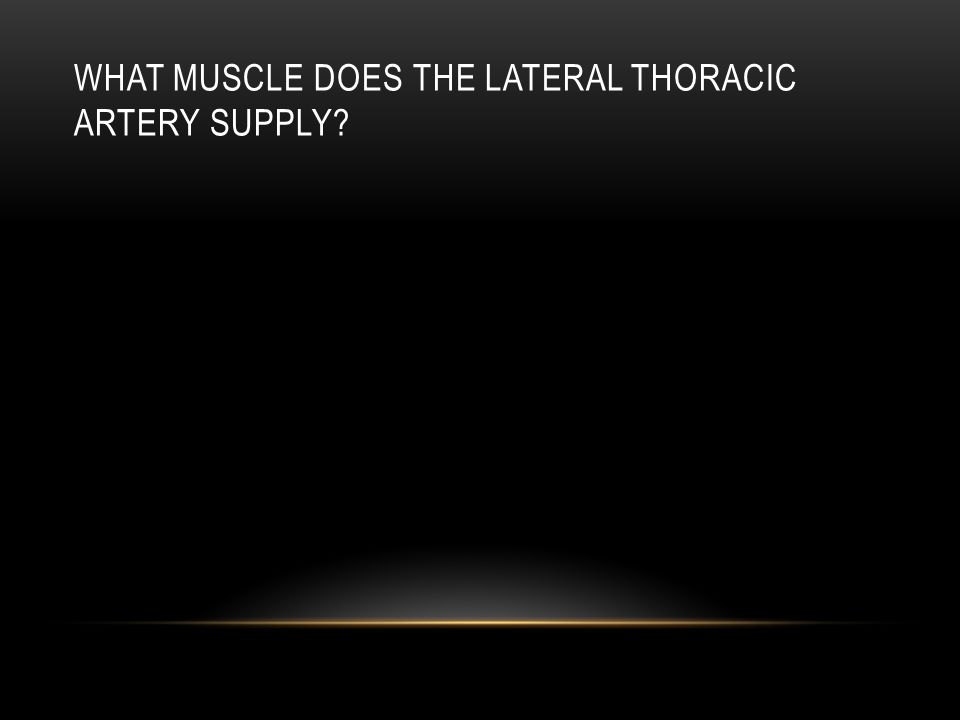 What muscle does the lateral thoracic artery supply