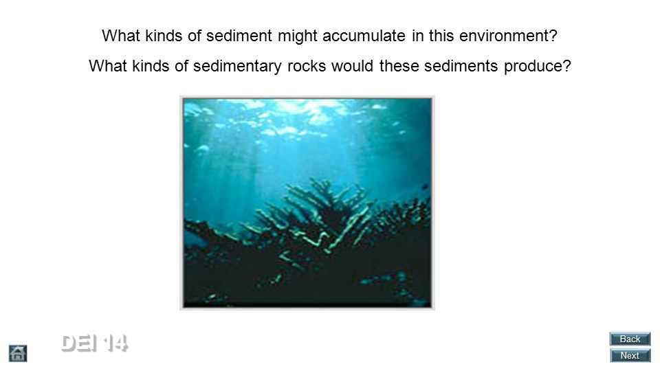 DEI 14 What kinds of sediment might accumulate in this environment