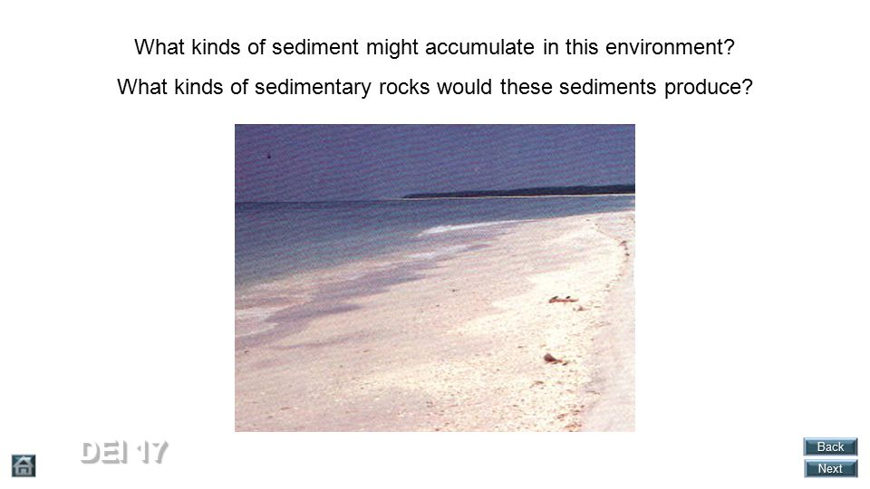 DEI 17 What kinds of sediment might accumulate in this environment
