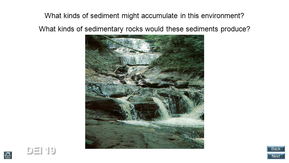 DEI 19 What kinds of sediment might accumulate in this environment