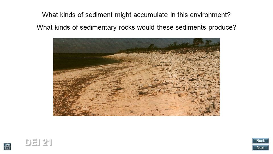 DEI 21 What kinds of sediment might accumulate in this environment