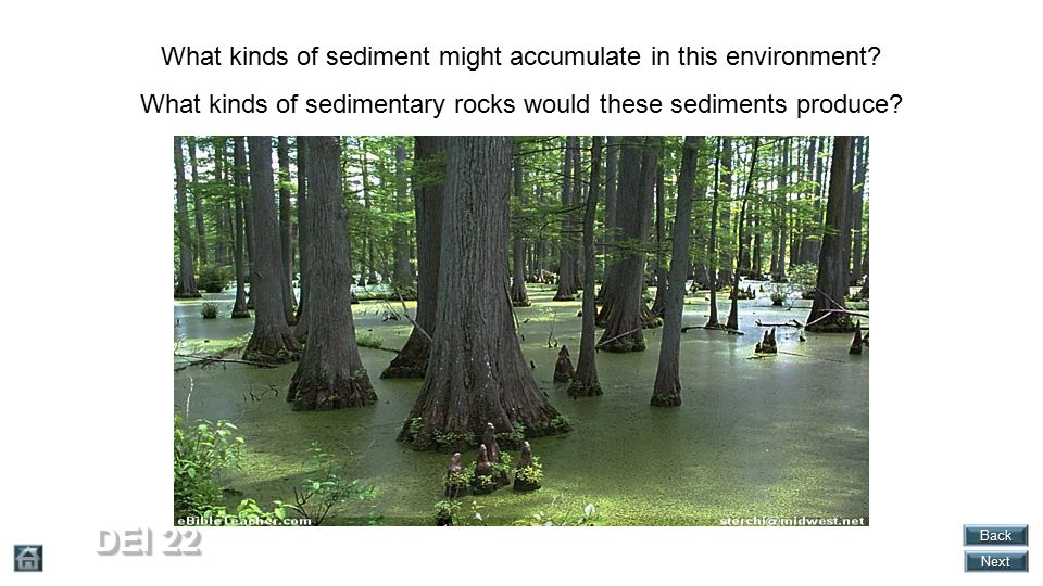 DEI 22 What kinds of sediment might accumulate in this environment