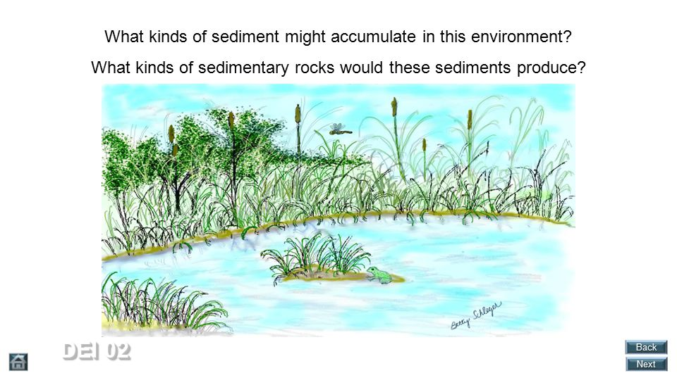 DEI 02 What kinds of sediment might accumulate in this environment