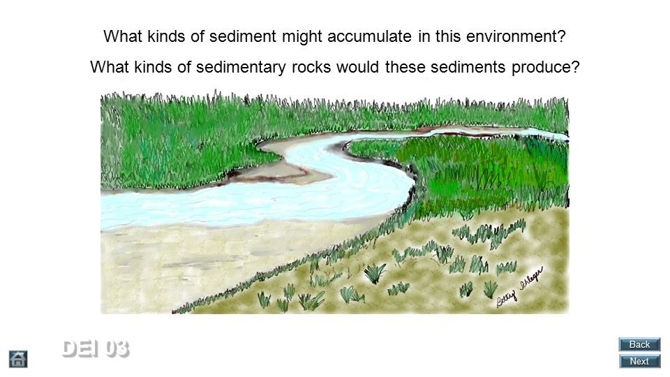 DEI 03 What kinds of sediment might accumulate in this environment