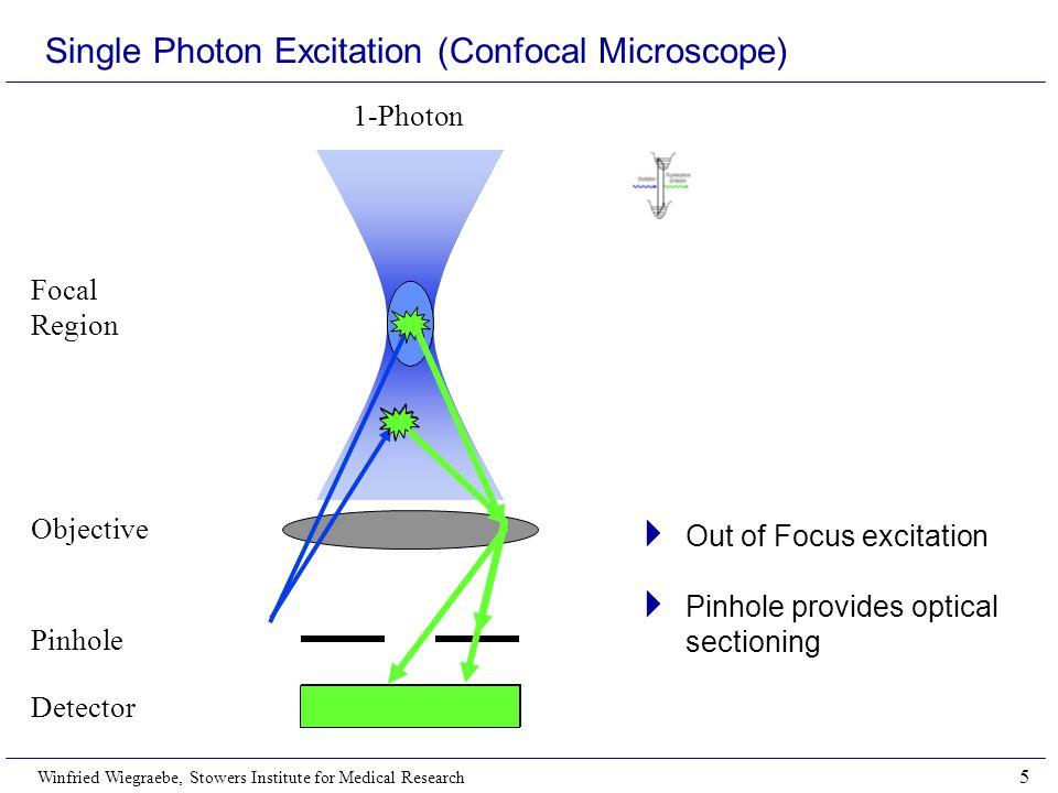 Single Photon Excitation (Confocal Microscope)